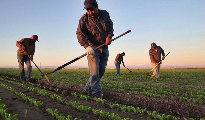 Yapılandırma çiftçiyi rahatlatacak
