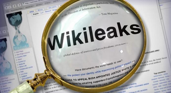 Wikileaks'ten şirketlere özel erişim izni