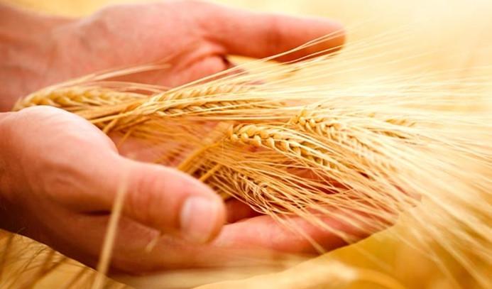 Tarım sigortası eğitimlerine 5 ilde devam edilecek