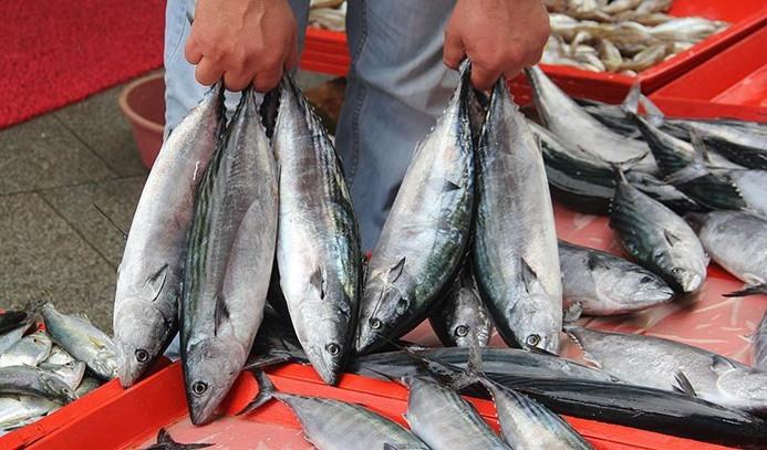 Karadenizli balıkçılar, yeni sezondan umutlu
