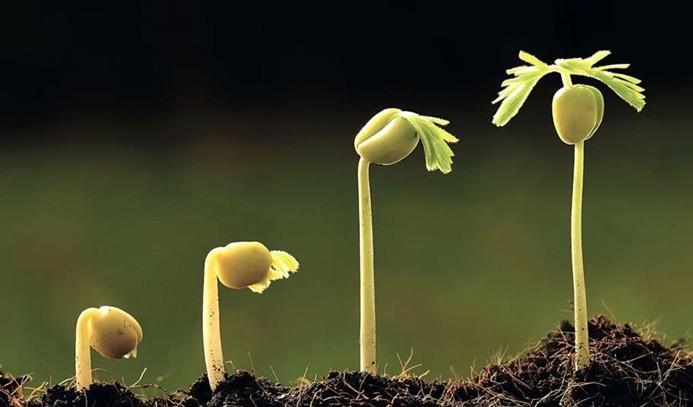 """Mardin'de """"yaşayan toprak, yerel tohum"""" için…"""