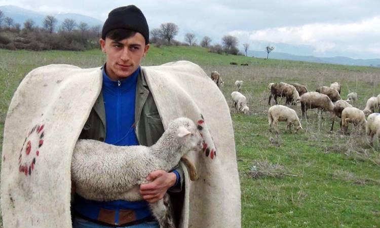 """Çobana """"sigorta primi desteği"""" önerisi"""