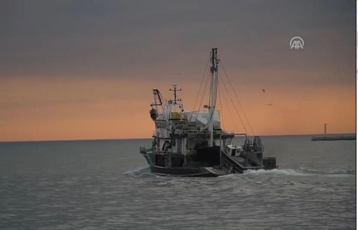 Balıkçılar umudunu istavrite bağladı