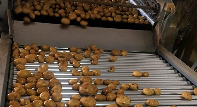 TZOB: Patates yiyin