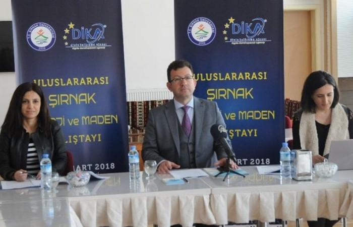 Şırnak'ta enerji ve maden çalıştayı