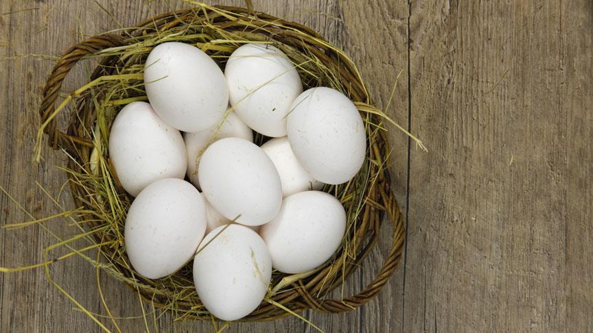 'Köy yumurtası hilesi'ni bitirecek uygulama başlıyor