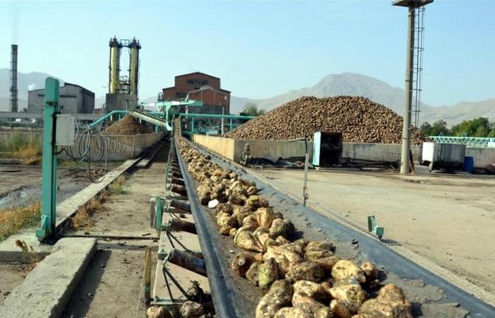 Şeker fabrikaları ihalesinde rekor satış