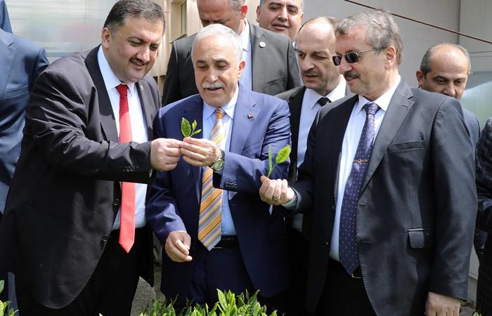 """Türkiye'de ÇAYKUR'un çayı kullanılmalı"""""""