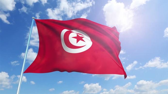 'BAE'den Tunus'ta darbe girişimi' iddiası
