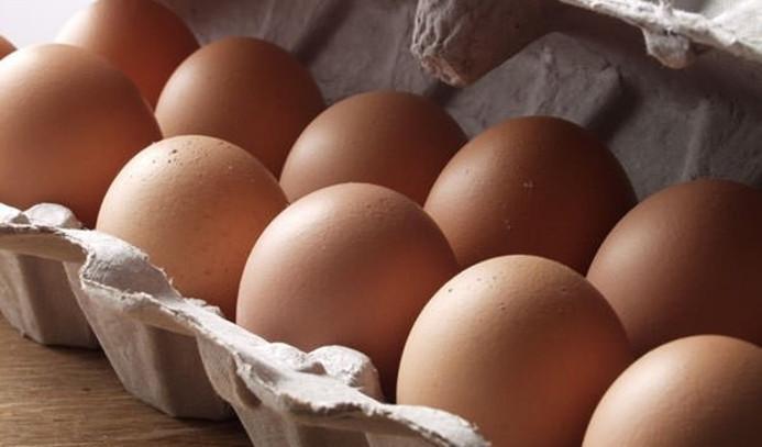Polonya'da 4 milyon 300 bin yumurta geri toplatılıyor