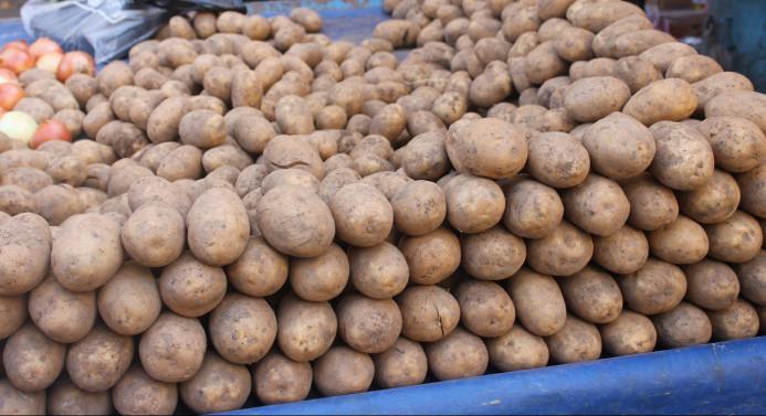 Rekabet'ten 'patates soğan'a takip