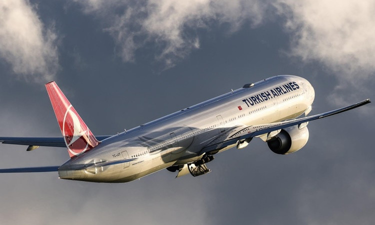 Motoruna kuş çarpan uçak acil iniş yaptı