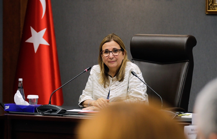 Pekcan 'Türkiye algısı' için destek istedi