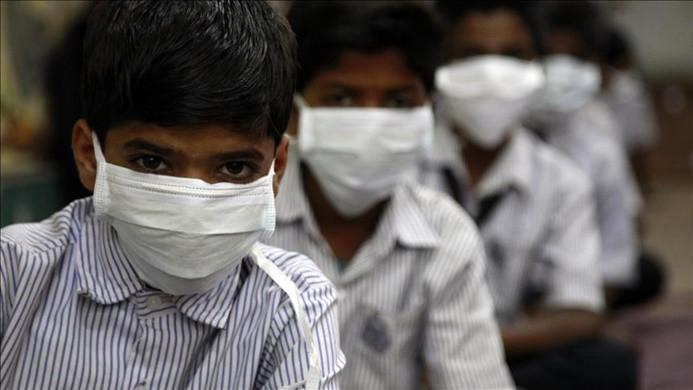 Hindistan'da 'domuz gribi' 3 ayda 75 can aldı