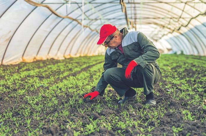 """""""Reform paketindeki tarımsal tedbirlerle enflasyonun düşürülmesi zor"""""""