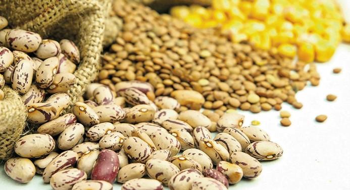 Hububat, bakliyat ve yağlı tohumlarda yeni sezon ve beklentiler