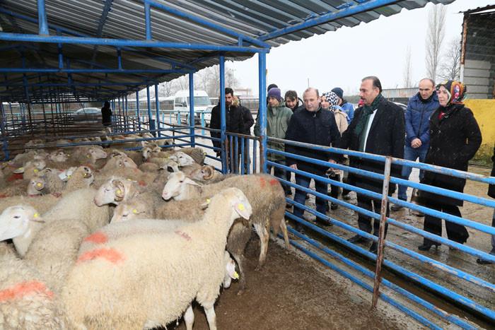 Bursalı genç çiftçilere 5.9 milyon TL hibe