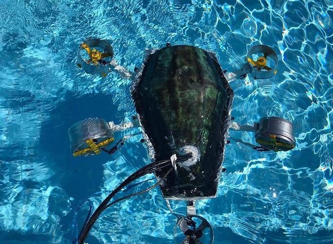 """Üniversiteliler kaplumbağadan ilham aldı """"su altı drone"""" prototipi üretti"""