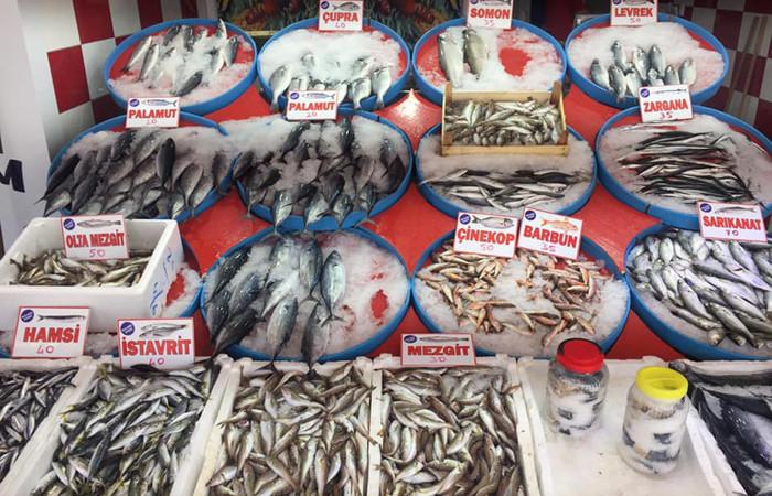 Ordu'da az av ve fazla talep nedeniyle balık fiyatları arttı