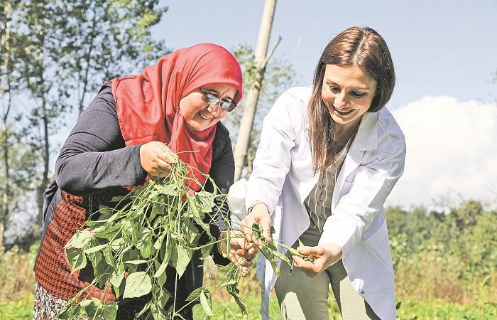 Reis Gıda, atalık tohum üretimine öncülük yapıyor