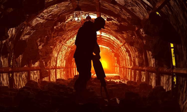 Madenciler Bakan'a rapor sundu