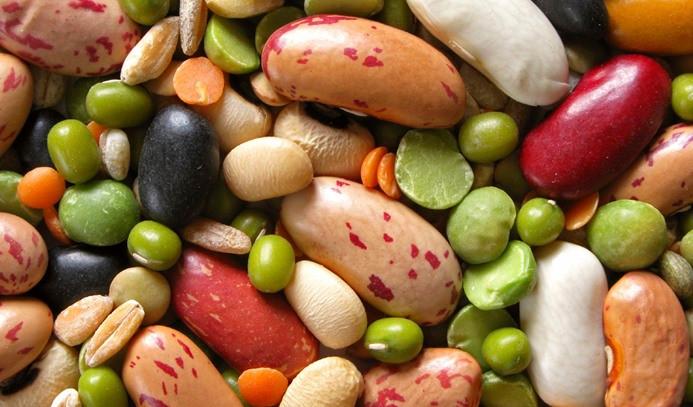 Et ürünleri alternatifi olarak bakliyat proteinleri