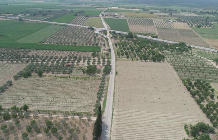Manisalı çiftçiler  hasat öncesi asfalt yola kavuşuyor