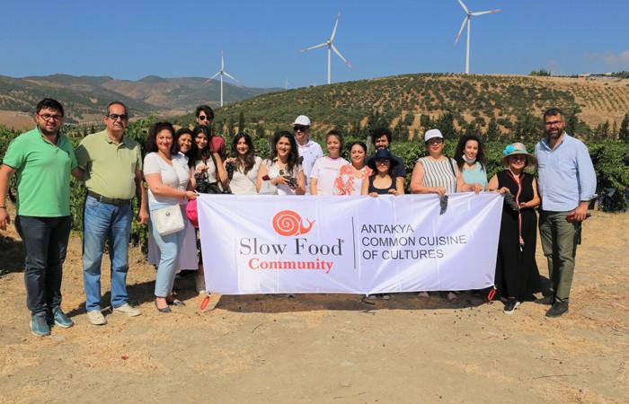 Slow Food Antakya'dan Barburi üzümünde bağbozumu şenliği