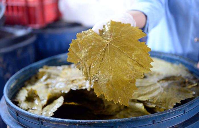 Erbaa'nın üzüm yaprağı sofralara lezzet katıyor